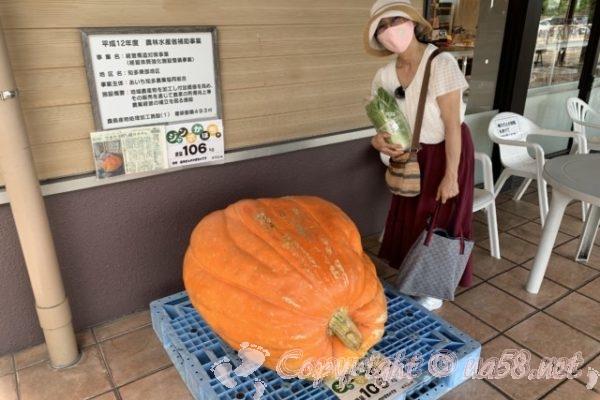 JAあぐりタウンげんきの郷(愛知県大府市)の106キロのジャンボカボチャ