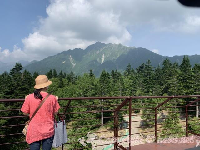 新穂高ロープウェイ(岐阜県高山市)の頂上、展望台から西保高岳と山荘