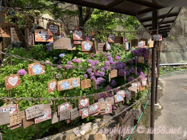 「飛騨大鍾乳洞」岐阜県高山市・恋人の聖地、絵馬のむこうにあじさい咲く