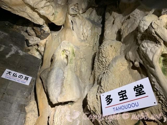「飛騨大鍾乳洞」岐阜県高山市・鍾乳洞の中、より狭まった洞窟の中他宝堂など