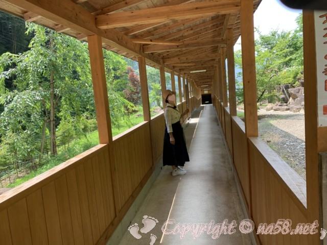 「飛騨大鍾乳洞」岐阜県高山市・帰り道の通路