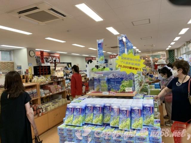 「道の駅富士吉田」(山梨県富士吉田市)富士山伏流水を使用して作るシャインマスカット