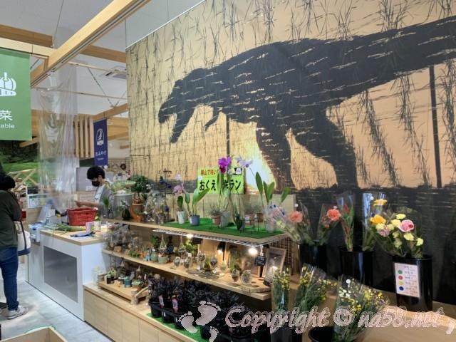 「道の駅 恐竜渓谷かつやま」(福井県勝山市)おみや下売り場 お花 多肉植物