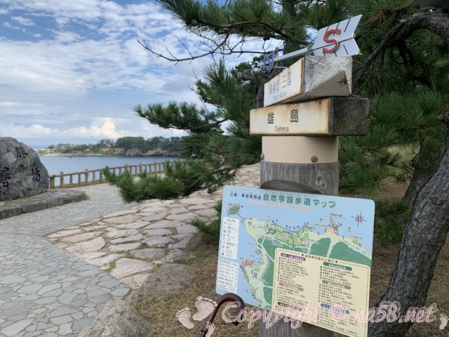 東尋坊(福井県坂井市)雄島への散策マップあり