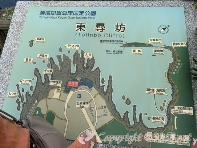 越前海岸東尋坊の全容がわかる地図