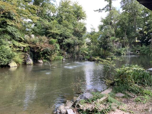 氣比神宮(福井県敦賀市)・境内 噴水のある池