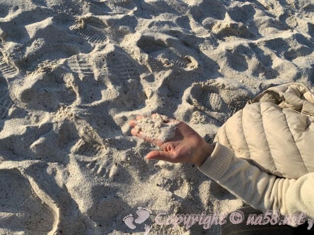 白良浜海水浴場(和歌山県白浜町)白良浜 白い砂を手に