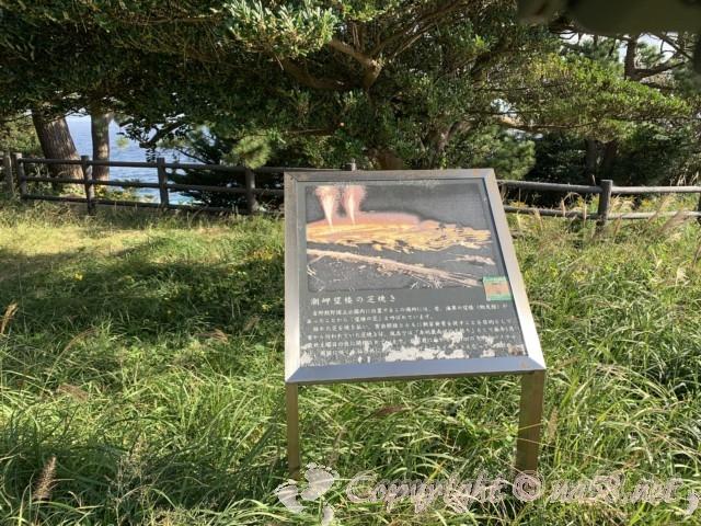 本州最南端 潮岬(和歌山県串本町)望楼の芝の解説