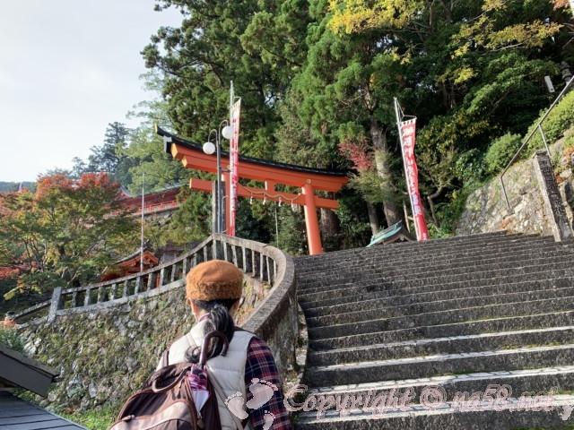 那智山参道 熊野那智大社の鳥居が見える(和歌山県那智勝浦町)