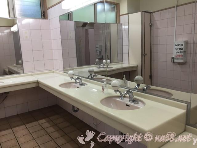 「道の駅紀宝町ウミガメ公園」(三重県紀宝町)女性用トイレ洗面所