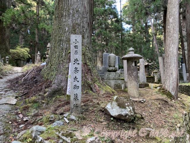 高野山の奥の院の参道 小田原北条氏ご墓所