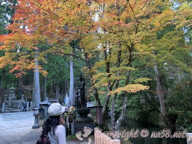 高野山の奥の院 紅葉も