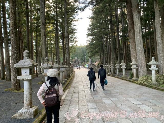高野山の奥の院の参道