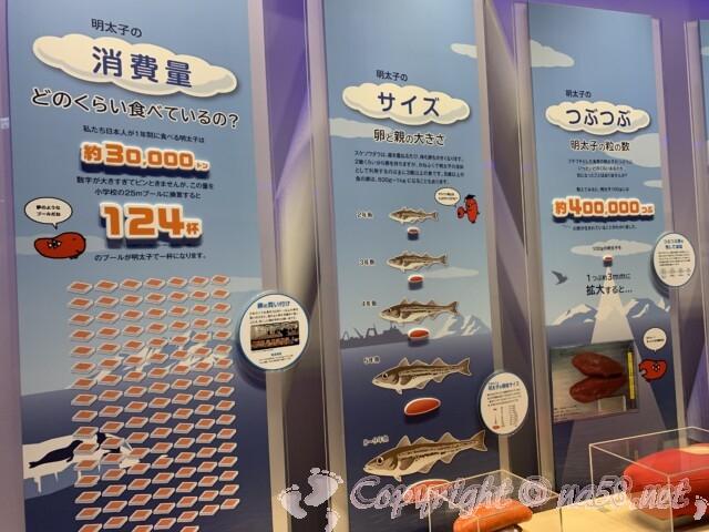 「めんたいパークとこなめ」愛知県常滑市 めんたいミュージアム展示