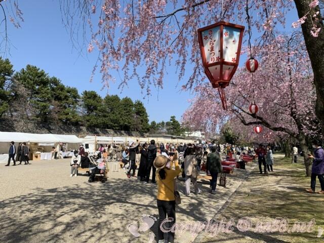 金鯱展(名古屋市中区)飲食ブース 桜まつりで桜ほころぶ