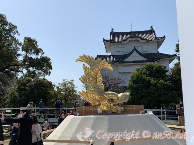 金鯱展(名古屋市名古屋城)山シャチ 雄の金シャチとやぐら