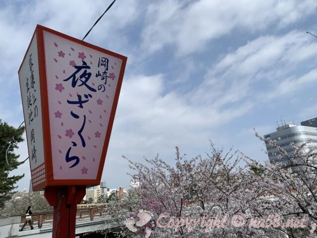 岡崎桜まつりはライトアップが素晴らしい