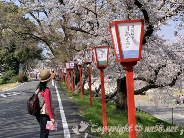 岡崎桜まつり 乙川沿いの桜とぼんぼり