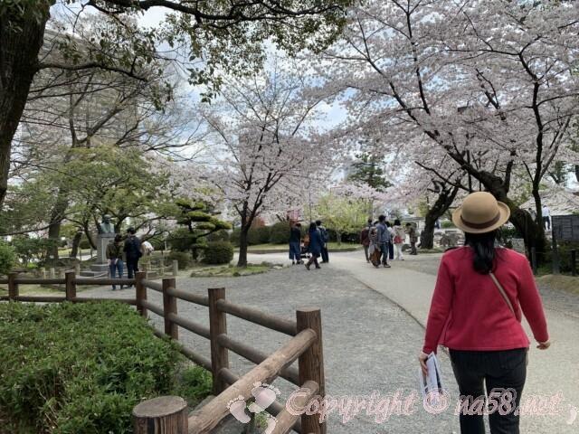 岡崎公園の桜 桜まつり期間