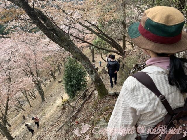 吉野山 奥千本の西行庵からの道