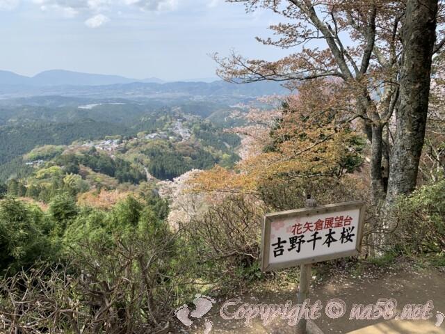 吉野山 上千本 花矢倉展望台 見晴らしよし