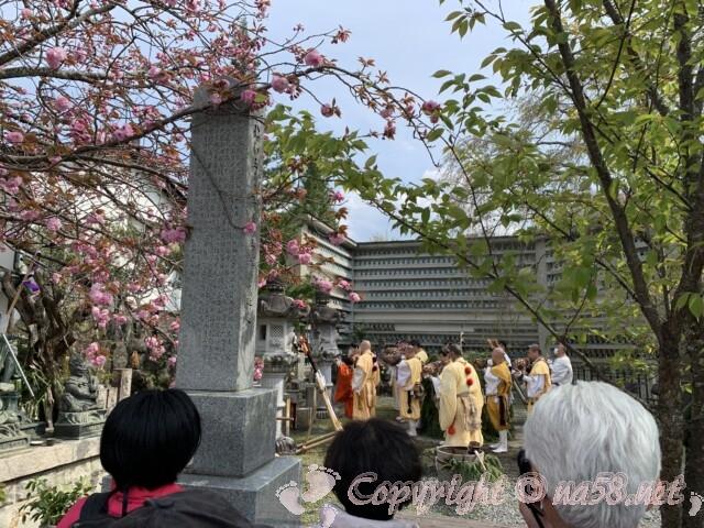 吉野山 中千本地域にある「桜本坊」般若心経を読み上げほら貝をふく方たちと桜