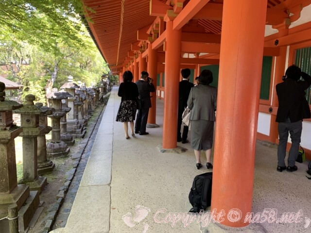 奈良県春日大社 ご本殿特別参拝回廊巡り