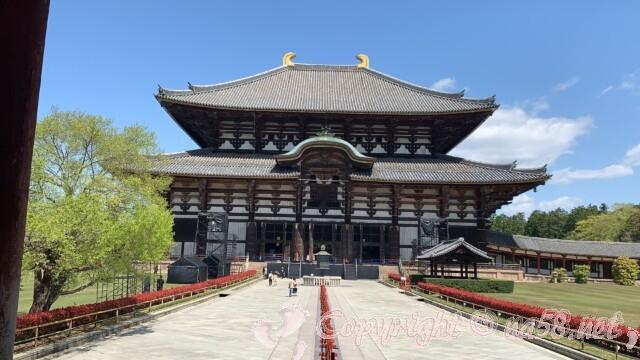奈良大仏殿の外観 全体像