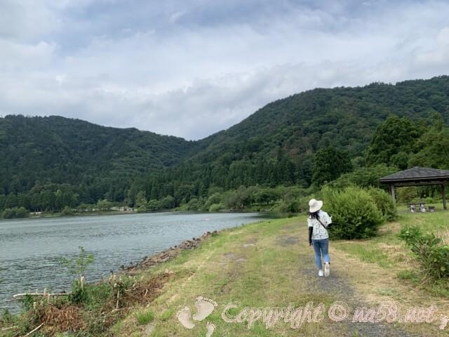 余呉湖あじさい園(余呉湖畔)の湖畔沿いのあじさいと散策路