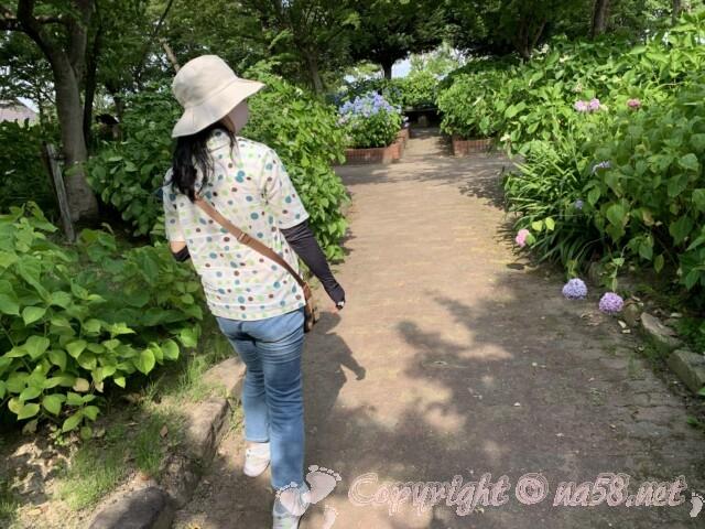 もりやま芦刈園(滋賀県守山市)のあじさい アジサイ満開 散策路