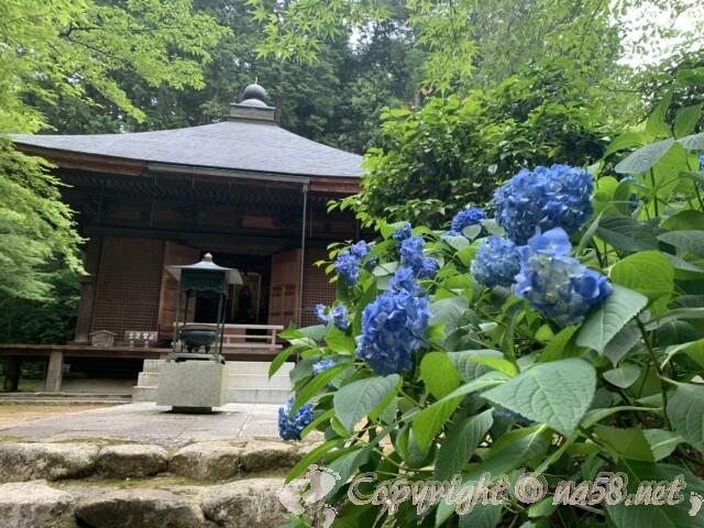 金剛輪寺(滋賀県愛知郡)地蔵堂とあじさい
