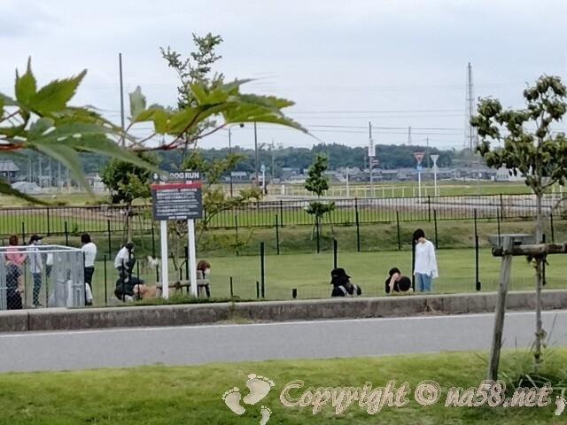 「道の駅 せせらぎの里こうら」滋賀県犬上群甲良町 大型ドッグラン