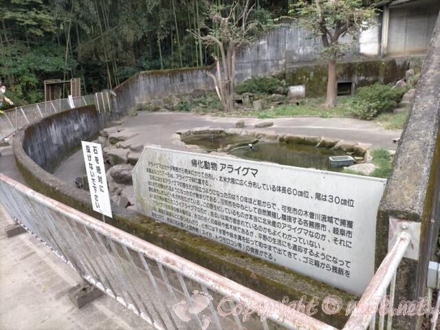日本ライン花木センター・帰化動物アライグマの住処